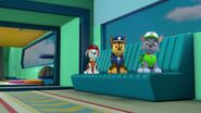PAW.Patrol.S02E07.The.New.Pup.720p.WEBRip.x264.AAC 899098