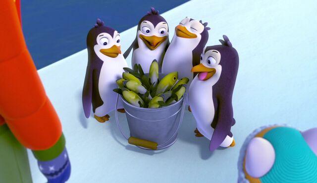 File:A Teeny Penguin 3.jpg