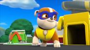 Super pup 11