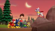 PAW Patrol Pups Save Apollo Scene 47