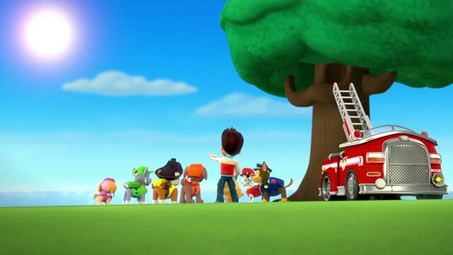 File:PAW.Patrol.S01E26.Pups.and.the.Pirate.Treasure.720p.WEBRip.x264.AAC 1004804.jpg