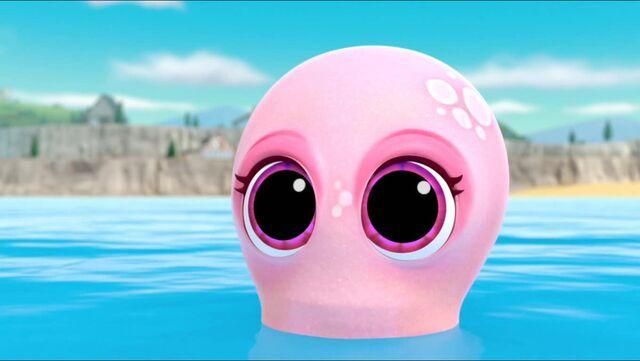 File:Baby Octopus 19.jpg