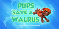 Pups Save a Walrus