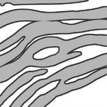 Pattern-dinosaursstripes
