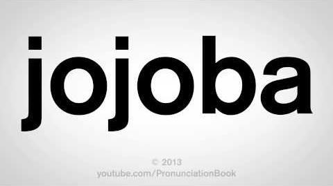How to Pronounce Jojoba-0