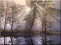 Thumbnail for version as of 02:06, May 5, 2007