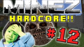 Thumbnail for version as of 21:36, May 9, 2015