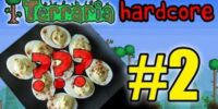 Terraria HC! - Part 2 (WHAT ARE WE DOING?!)
