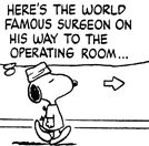 Dr Snoopy