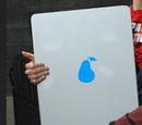 PearPads