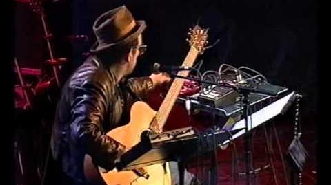 Meltdown Elvis Costello performs When I Was Cruel