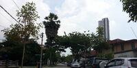 Nirwana Road