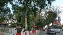 Green Lane, George Town, Penang