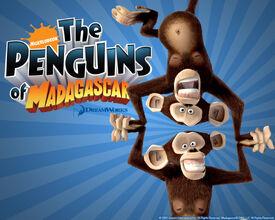 Madagascar-Wallpaper-chimps
