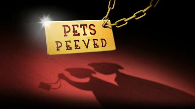 File:56a - Pets Peeved.jpg