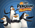 Madagascar-Wallpaper-Penguins.jpg