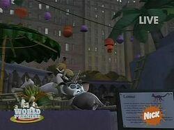 Lemur-Habitat 8