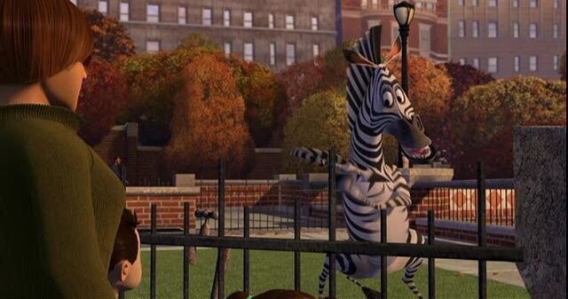 File:Zebra 6.jpg