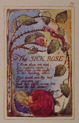 Blake sick rose