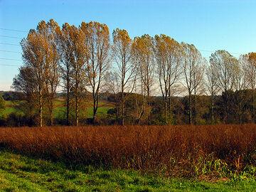 Autumn Fields near Frilsham - geograph.org.uk - 71187
