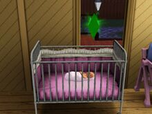 Sims Baby