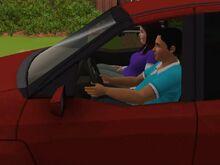 Sims Car-0