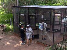 Aviary Entrance