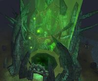 Wraithgate tight crop