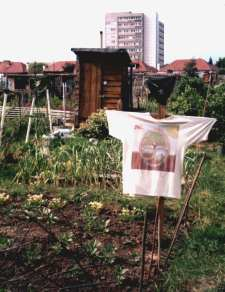 File:Allotment1.jpg