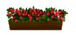 File:Distant pink geraniums decal.png