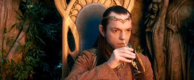File:Elrond watching the Company.jpg