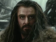 Richard Armitage as Thorin DOS