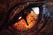 Smaug eye
