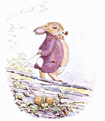 File:Tpc-m-the-tale-of-benjamin-bunny-beatrix-potte-img23.jpg