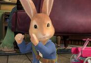 Peter-Rabbit-Character-From-Peter-Rabbit-Show-Image