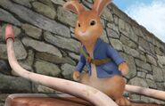 Peter-Rabbit-From-Peter-Rabbit-Nick-Jr-Show-Character-Image0x429