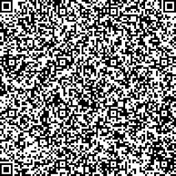COPYIT v1 0 2 QR1of3