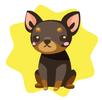 Black chihuahua plushie