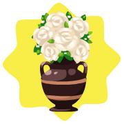 White roses flower pot