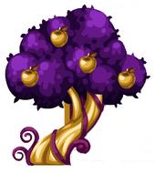 Golden Chocolate Apple Tree