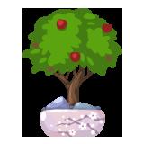 Bonsai tree example