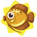Golden discus fish