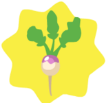 Tiny-HG-Turnip