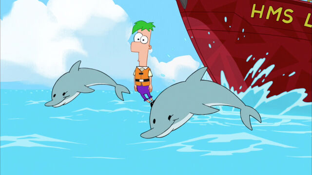 File:Ferb swimming with the dolphins2.jpg