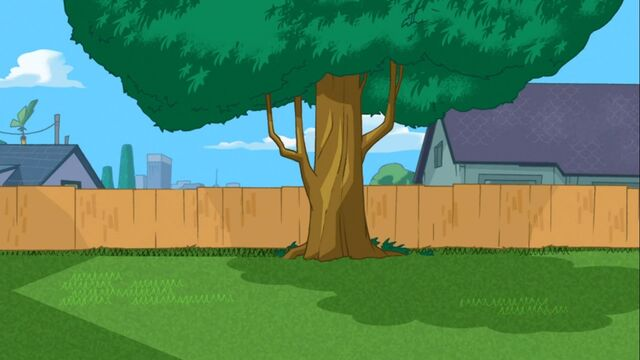 File:Phineas and Ferb are not in the backyard.jpg