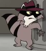 Agent Racoon