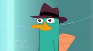 Perry sad