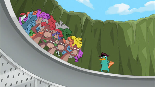 File:Perry watches as the monkeys wash doof.jpg