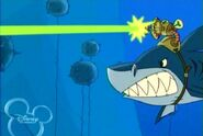 Shark with laser beam