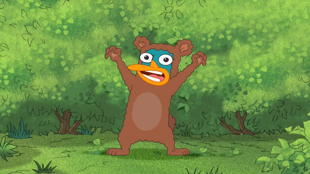 File:Perry, The Bear.jpg